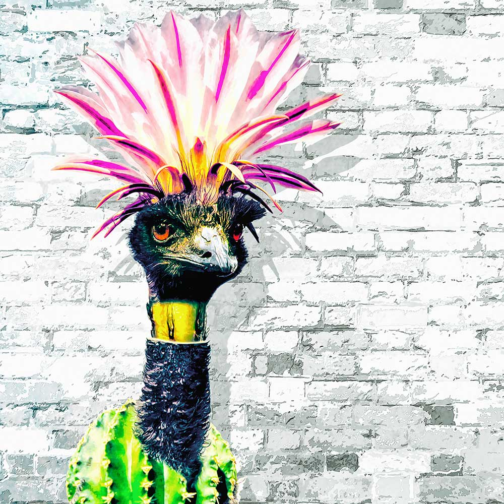 Fotomanipulatie emoe met een cactus