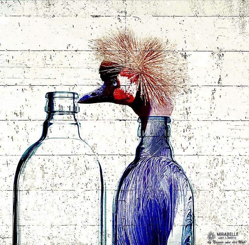 Vogel in een fles