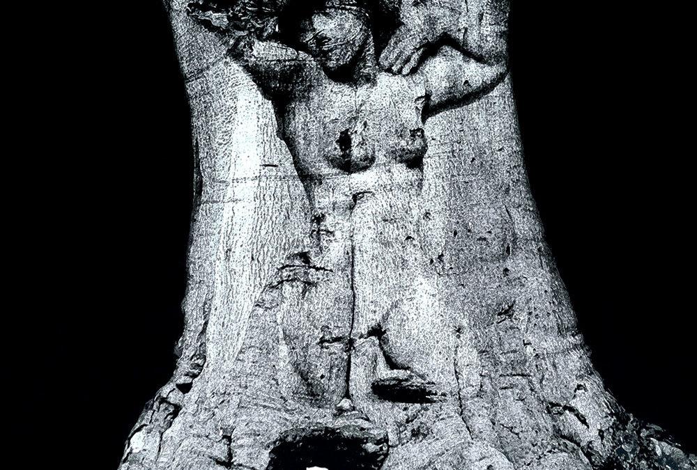 Vrouwen figuur in boom