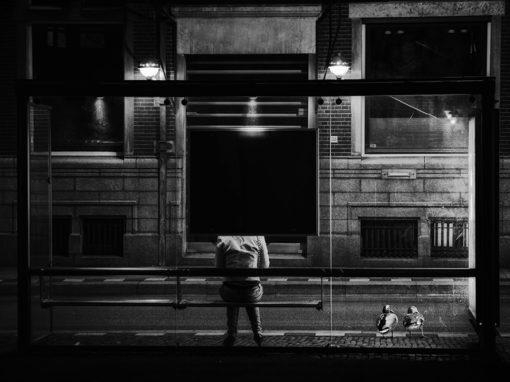 Eendjes die wachten op de bus (fotomanipulatie)